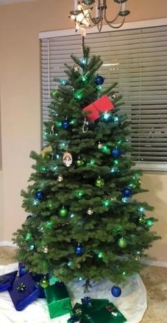 Christmas-tree-e1545495290925.jpg